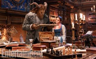 Beauty-Beast-Castle-Library-Photo